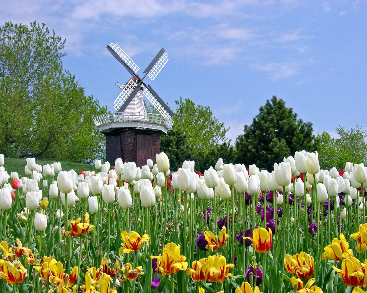 Best Places to Visit in the Netherlands